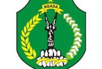 CPNS Kabupaten Ngada 2018