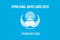 CPNS Gayo Lues 2018