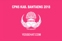 CPNS Kabupaten Bantaeng 2018