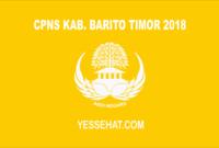 CPNS Kabupaten Barito Timur 2018