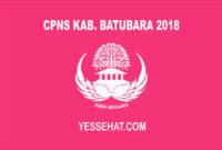 CPNS Kabupaten Batubara 2018