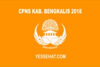 CPNS Kabupaten Bengkalis 2018
