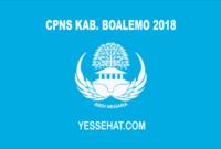CPNS Kabupaten Boalemo 2018
