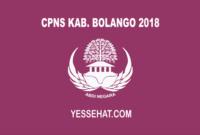 CPNS Kabupaten Bolango 2018