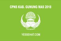 CPNS Kabupaten Gunung Mas 2018