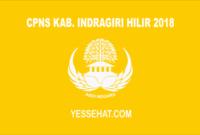CPNS Kabupaten Indragiri Hilir 2018