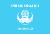 CPNS Kabupaten Kapuas 2018