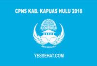 CPNS Kabupaten Kapuas Hulu 2018