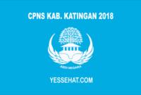 CPNS Kabupaten Katingan 2018