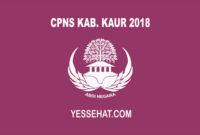 CPNS Kabupaten kaur 2018