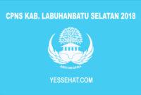 CPNS Kabupaten Labuhanbatu Selatan 2018