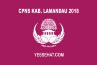 CPNS Kabupaten Lamandau 2018