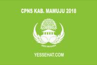 CPNS Kabupaten Mamuju 2018