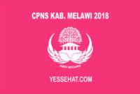 CPNS Kabupaten Melawi 2018