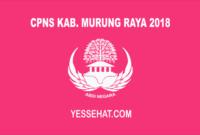 CPNS Kabupaten Murung Raya 2018
