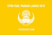 CPNS Kabupaten Padang Lawas 2018