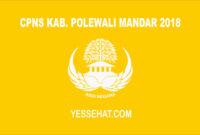 CPNS Kabupaten Polewali Mandar 2018