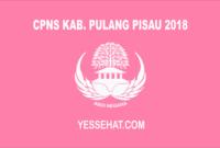 CPNS Kabupaten Pulang Pisau 2018