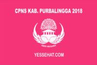 CPNS Kabupaten Purbalingga 2018
