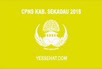 CPNS Kabupaten Sekadau 2018