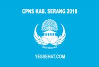 CPNS Kabupaten Serang 2018