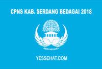 CPNS Kabupaten Serdang Bedagai 2018