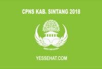 CPNS Kabupaten Sintang 2018