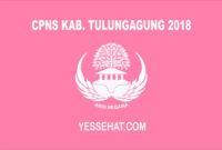 CPNS Kabupaten Tulungagung 2018