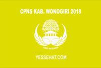 CPNS Kabupaten Wonogiri 2018