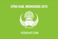 CPNS Kabupaten Wonosobo 2018