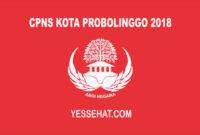 CPNS Kota Probolinggo 2018