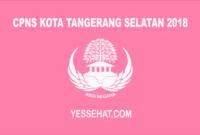 CPNS Kota Tangerang Selatan 2018