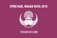 CPNS Nagan Raya 2018