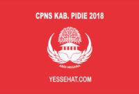CPNS Pidie 2018