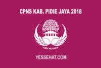 CPNS Pidie Jaya 2018
