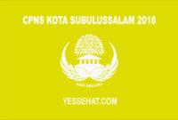 CPNS Subulussalam 2018
