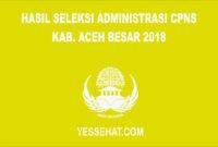 Hasil Seleksi Administrasi CPNS Kabupaten Aceh Besar