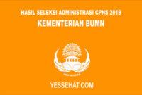 Hasil Seleksi Administrasi CPNS Kementerian BUMN 2018