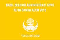 Hasil Seleksi Administrasi CPNS Kota Banda Aceh