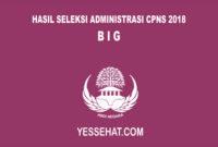 Pengumuman Hasil Seleksi Administrasi CPNS BIG 2018