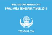 Pengumuman Hasil SKD CPNS Kemenag Nusa Tenggara Timur 2018