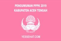 Pengumuman PPPK / P3K Aceh Tengah 2019