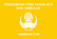 Formasi CPNS Kabupaten Simeulue Tahun 2019