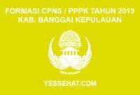 Formasi CPNS / PPPK / P3K Kabupaten Banggai Kepulauan 2019