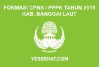 Formasi CPNS / PPPK / P3K Kabupaten Banggai Laut 2019