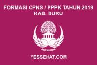 Formasi CPNS / PPPK / P3K Kabupaten Buru 2019