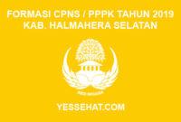 Formasi CPNS / PPPK / P3K Kabupaten Halmahera Selatan 2019