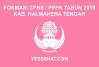 Formasi CPNS / PPPK / P3K Kabupaten Halmahera Tengah 2019