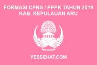 Formasi CPNS / PPPK / P3K Kabupaten Kepulauan Aru 2019