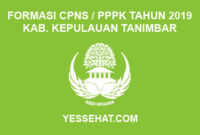Formasi CPNS / PPPK / P3K Kabupaten Kepulauan Tanimbar 2019